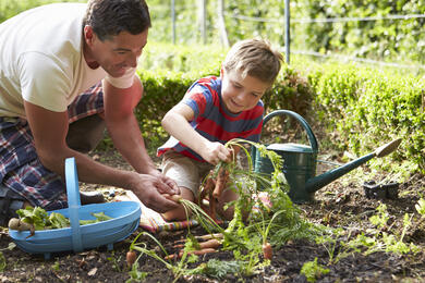 April garden guide: Tips to help keep your garden in sharp shape