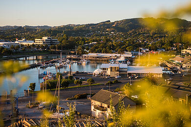 Gisborne's economy is moving ahead at a steady clip