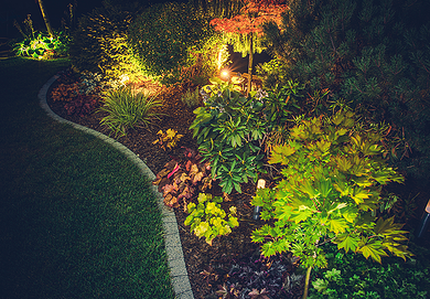 5 tips to add value to your home through landscaping